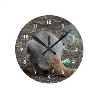 opinión trasera del wallaby que mira sobre animal reloj redondo mediano
