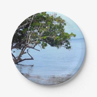 Opinión tropical del árbol costero plato de papel de 7 pulgadas
