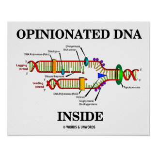 Biology genes posters zazzle opinionated dna inside genetics genes humor poster malvernweather Image collections