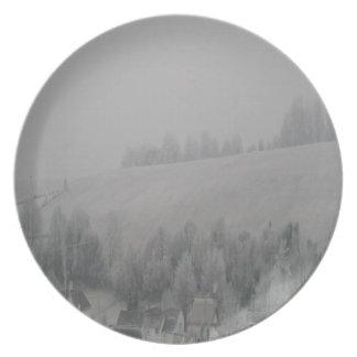 Opiniones del país - pleno invierno triste plato