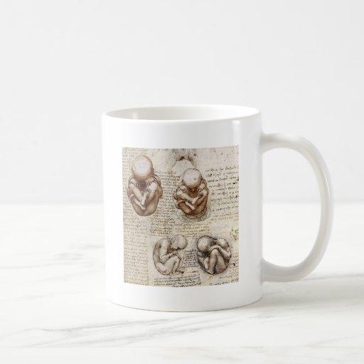 Opiniones un feto en la matriz tazas de café