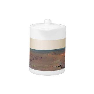 Oportunidad de Marte Rover del panorama del asilo