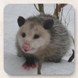 Opossum Beverage Coaster