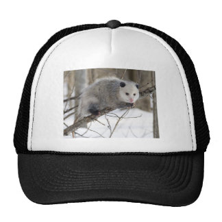 Opossum Love Mesh Hats