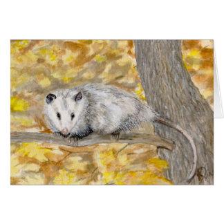 Opossum Note Card