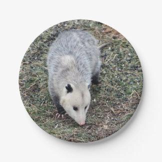 Opossum Paper Plate