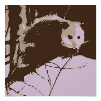 Opossum Pop Art Poster