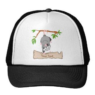 Opossum with sign trucker hat