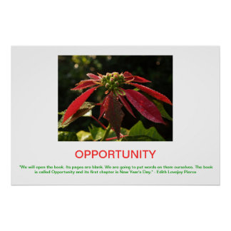 OPPORTUNITY demotivational poster