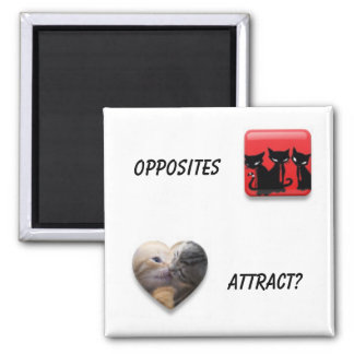Opposites Attract 2 Inch Square Magnet