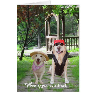 Opposites Attract Funny Dogs Card