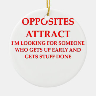 opposites attract ornaments