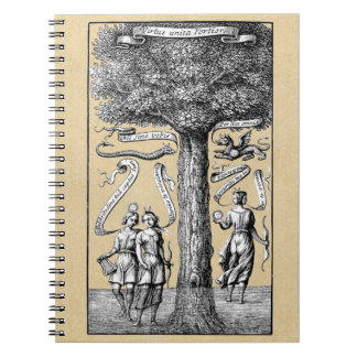 Opposites United by Conjunction in Alchemy Notebook