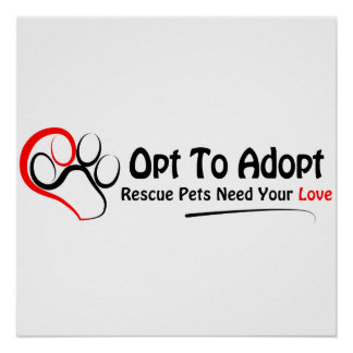 Opt To Adopt Poster