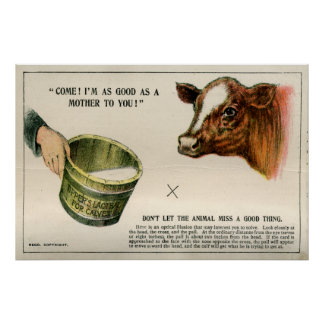 Optical illusion, 1896 poster