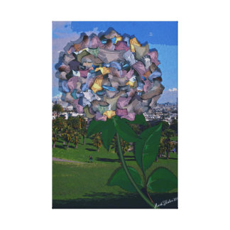 Optical Illusion:  A Flower Grows in Dolores Park Canvas Print