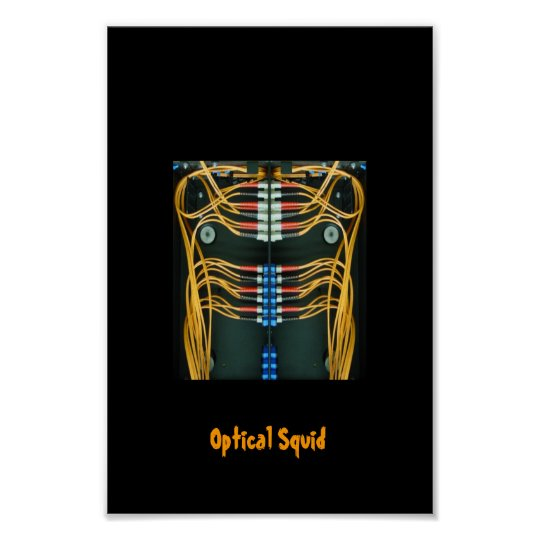 Optical Squid Poster