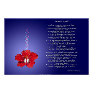 Optimist's Creed: Inspirational Hibiscus Poster