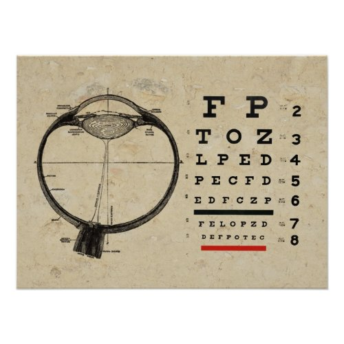 Optometry Poster Ophthalmologist Eye Chart