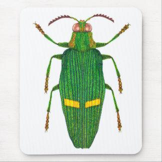 Opulent jewel beetle mouse pad