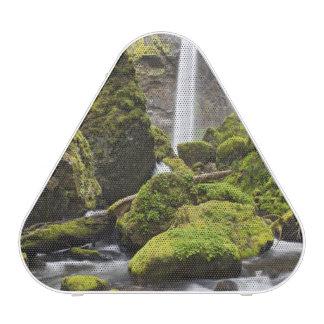 OR, Columbia River Gorge, Elowah Falls and Bluetooth Speaker
