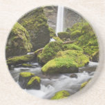 OR, Columbia River Gorge, Elowah Falls and Drink Coaster