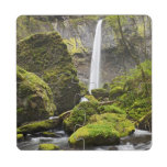 OR, Columbia River Gorge, Elowah Falls and Puzzle Coaster