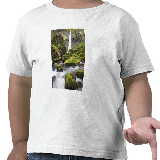 OR, Columbia River Gorge, Elowah Falls and Tshirt