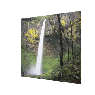 OR, Columbia River Gorge, Elowah Falls, McCord Canvas Print