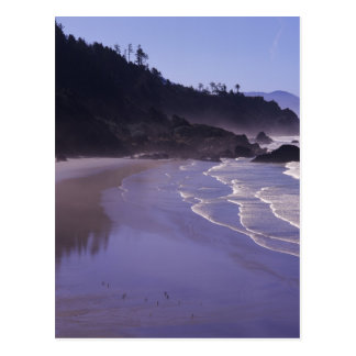 OR, Ecola SP, Indian Beach with morning fog Postcard
