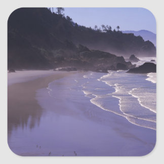 OR, Ecola SP, Indian Beach with morning fog Stickers