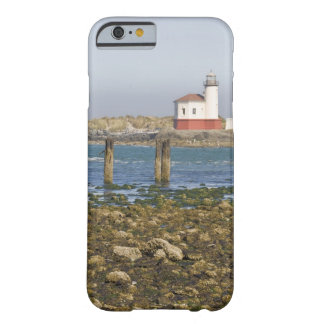 OR, Oregon Coast, Bandon, Coquille River 2 Barely There iPhone 6 Case