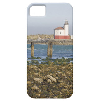 OR, Oregon Coast, Bandon, Coquille River 2 iPhone SE/5/5s Case