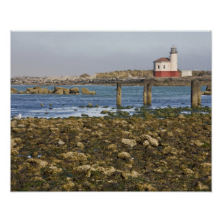 OR, Oregon Coast, Bandon, Coquille River Poster