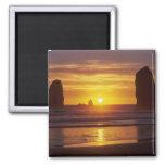 OR, Oregon Coast, Cannon Beach, seastacks at 2 Magnet