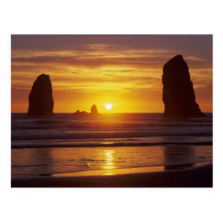 OR Oregon Coast Cannon Beach seastacks at 2 Post Cards