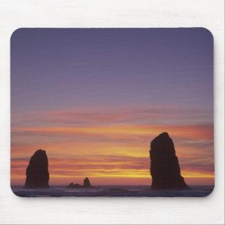 OR, Oregon Coast, Cannon Beach, seastacks at Mouse Pad