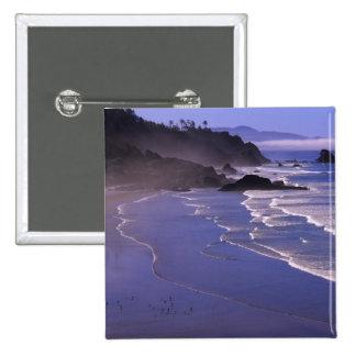 OR, Oregon Coast, Ecola SP, Indian Beach with Button