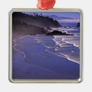 OR, Oregon Coast, Ecola SP, Indian Beach with Metal Ornament