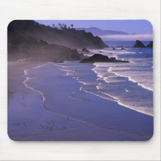OR, Oregon Coast, Ecola SP, Indian Beach with Mouse Pad