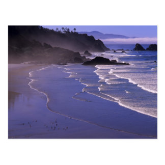 OR, Oregon Coast, Ecola SP, Indian Beach with Postcard