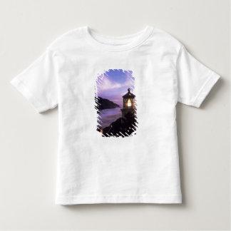 OR, Oregon Coast, Heceta Head Lighthouse, on Tee Shirt
