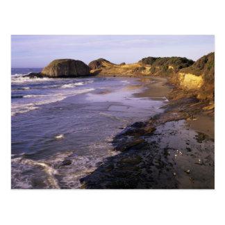 OR, Oregon Coast, Newport, shoreline at Seal Postcard