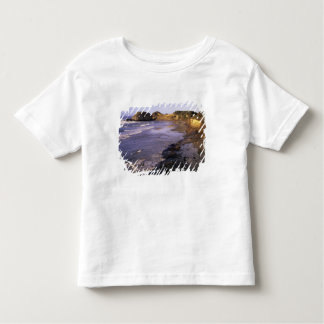 OR, Oregon Coast, Newport, shoreline at Seal Toddler T-shirt