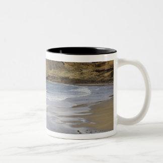 OR, Oregon Coast, Seal Rock State Park, Two-Tone Coffee Mug