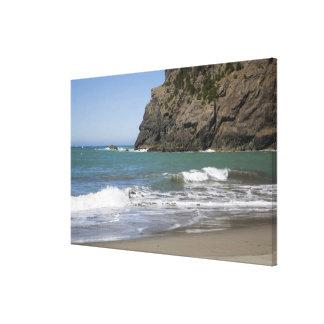 OR, Oregon Coast, Whaleshead Beach, South Canvas Print
