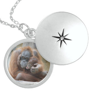 Orang Utan 001 Locket Necklace