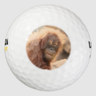Orang Utan 115 Golf Balls