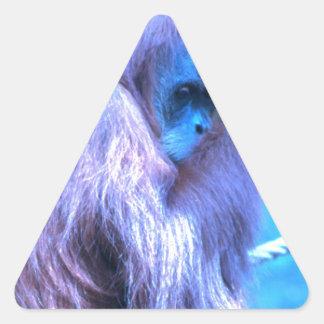 Orang Utan, azul púrpura Pegatina Triangular