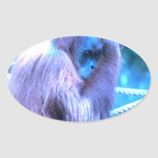Orang Utan, azul púrpura Pegatina Ovalada